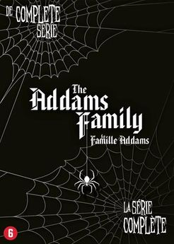 Addams Family, The  DVD