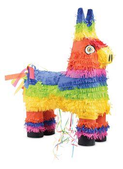 "Piñata ""Ane"""